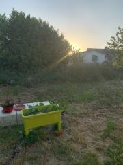 la maison fr, ËÄÜ, 7plantes, 7charas,