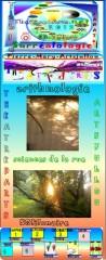 Louis'Derbré, Louise'Bourgeois, allélopathie, explorologie, éduscol,