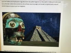 Yucatan, Mexique, les puits sacrés des mayas , Axolotl,