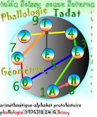 phallologie-net.jpg